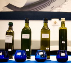 Olive oil tasting educational seminars