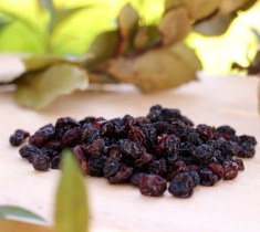 Analysis of the secondary bioactive metabolites in the Corinthian currants produced in Messinia